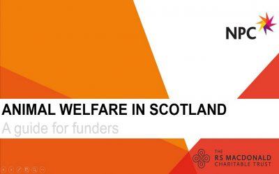 Animal Welfare in Scotland: A Guide for funders